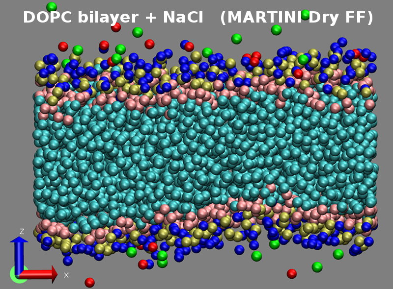 NpT simulation of a phospholipid bilayer (MARTINI Dry model).